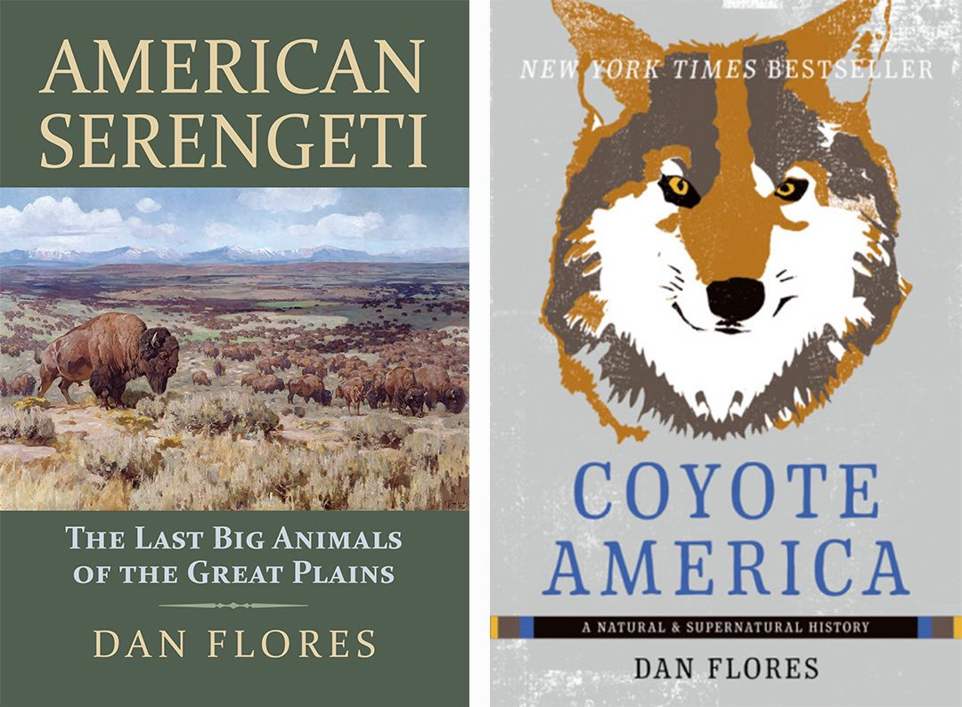 American Serengeti and Coyote America book covers